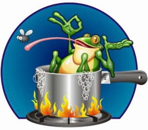 溫水裡的青蛙,可以不死