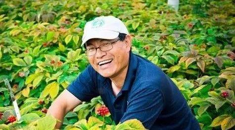 从都市医学博士到著名参农:华裔儒商下西洋的故事