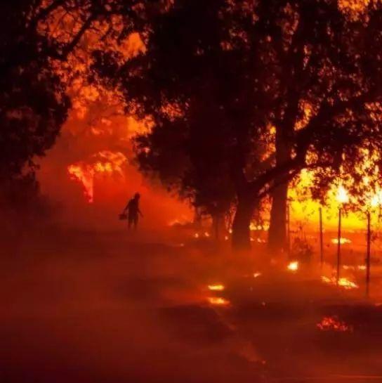 图姐 | 加州山火23人死亡包括一对百岁老人,几百人失踪,数千房屋被毁!