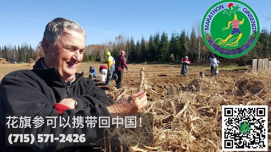 与陈霞芬分享胜利喜悦,三年来各方支持者心路历程访谈录