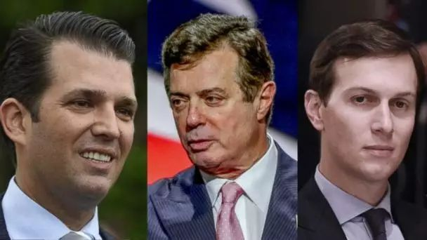 小特朗普、马纳福特和库什纳至少犯了未遂罪