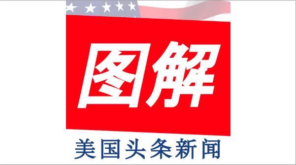 图姐独家特刊 | 百万女性大游行队伍中的华人 /【投票】您支持女性大游行吗?