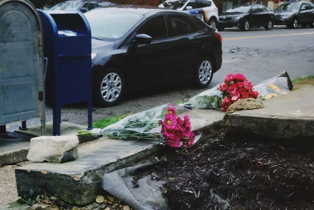 生命之树下鲜红的花——写在美国史上最惨重反犹枪击案之后