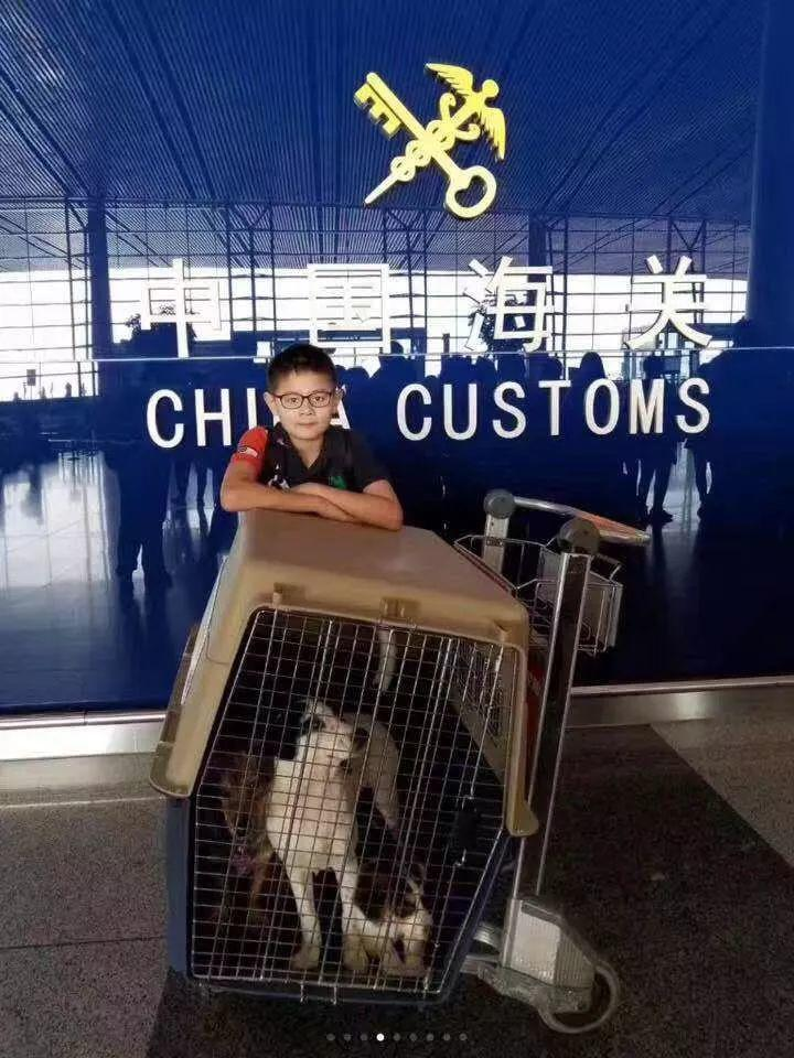 2018,美国华人社区默默耕耘者正在书写历史