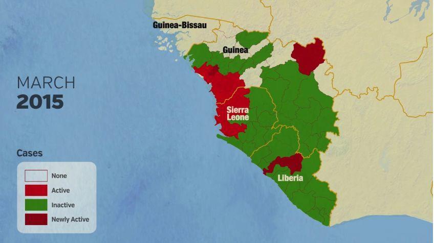 來自蝙蝠、死亡率近90%的埃博拉病毒如何被控製及瑞德西韋的來曆