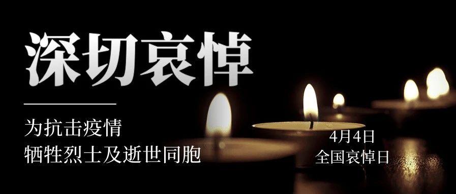 写在全国哀悼日,除了哀悼还有什么?