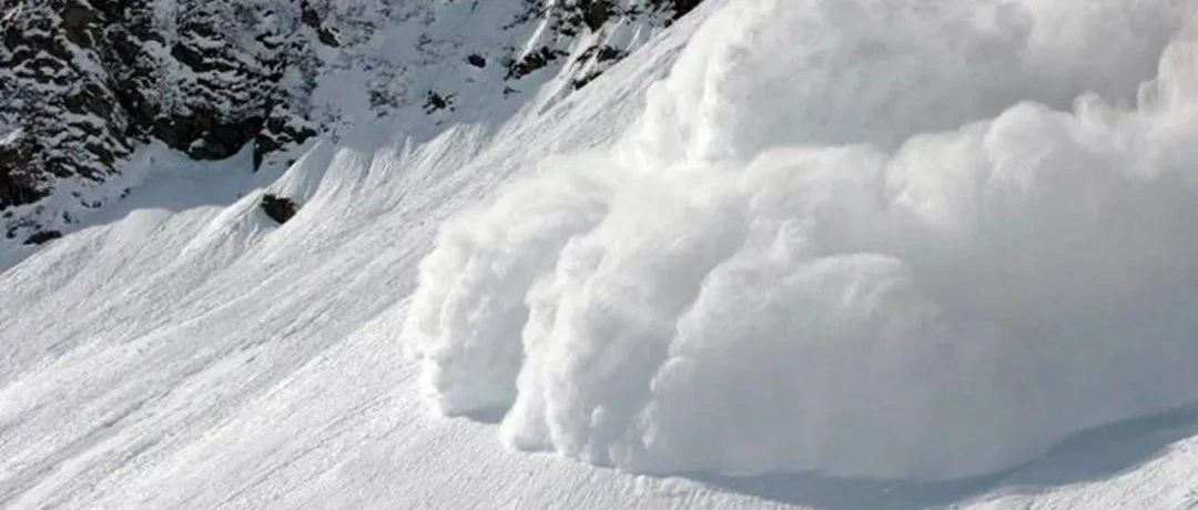 当雪崩的时候,哪一片雪花是无辜的?| 专访前川普支持者